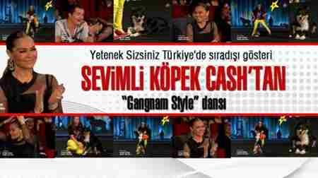20130228_yetenek-sizsiniz-turkiye-de-sevimli-kopek-cash-ten-gangnam-style-dansi_m-624x350