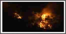 karaçam orman yangını 1