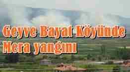 geyve bayat köyü mera yangını