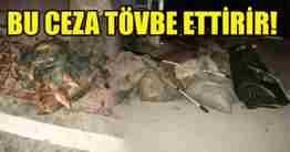tARAKLIDA BALIK AVCILARINA REKOR CAZA