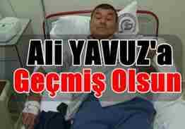 ali yavuz -geyve 1 (1)