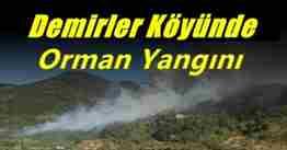 demirler köyünde orman yangını