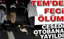 Sakarya_TEM_Feci_Olum_Cesed_Otoban_Yayildi.jpg-24-11-2013