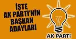 iste_ak_partinin_buyuksehir_adaylari_h25731-620x320