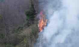 geyve akıncı köyü orman yangını (11)