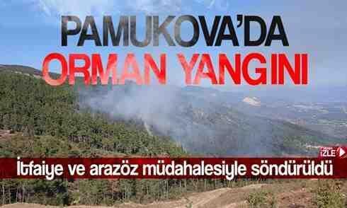 Pamukova'da çıkan yangın ormana sıçradı