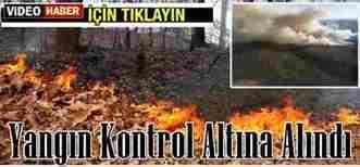 Göynük'teki Orman Yangını Kontrol Altına Alındı.