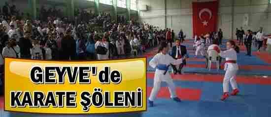 Geyve'de Karate Şöleni