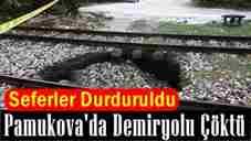 Pamukova'da -Demiryolu -coktu-seferler-durduruldu-4