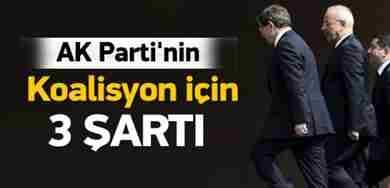 ak_partinin_odun_vermeyecegi_3_kirmizi_cizgi_1433838239_3351