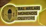 bal-arilari-muhendis-projesi-