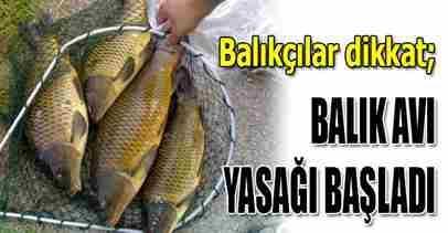 Balıkçılar DİKKAT! Balık Avı Yasağı başladı