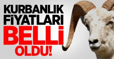 diyanet-mehmetcik-vakfi-kurbanlik_fiyatlari_belli_oldu_h6094