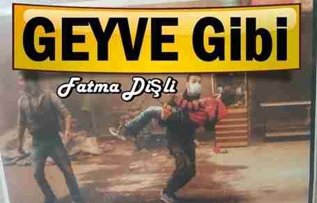 Geyve Gibi !