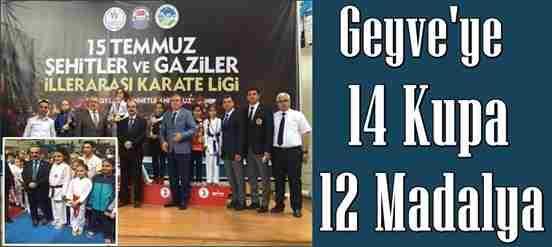 Geyve Karate takımlarından 14  kupa, 12 madalya