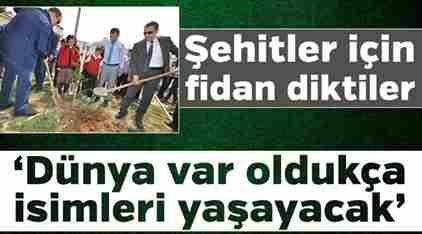 Afrin Zeytin Dalı Harekatı Şehitlerimiz Anısına Fidan Dikildi.