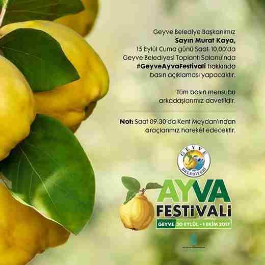 Geyve Ayva Festivalinin Programı Açıklanıyor