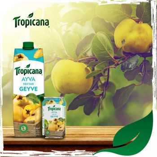 geyve-ayva-nektari-tropicano-