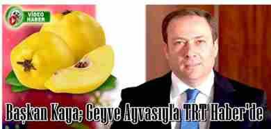 geyve-belediye-baskani-murat-kaya-geyve-ayvasi-trt-haber-