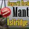 Mantar'da İstiridye Bereketi