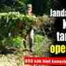 Jandarma'dan Hint Keneviri Operasyonu
