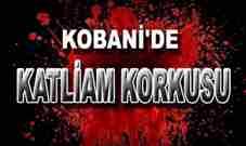 kobani-katliam-isid-