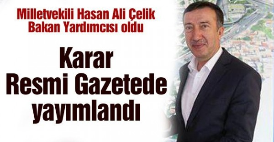 milletvekili_hasan_ali_celik_bakan_yardimcisi_oldu_h48274_ae5b7