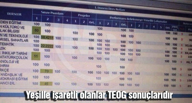 ozel_okullarin_teog_oyunu2