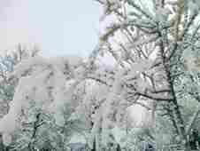 pamukova-eskiyayla-mart-kar-goruntuleri- (1)