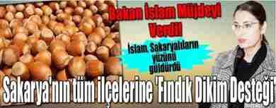sakarya-findik-dikim-destegi--crop