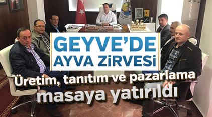 Geyve'de Ayva Zirvesi