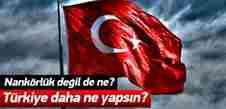 turkiye_kobani_icin_ne_yaptiysa_yaranamadi_1422693589_5846