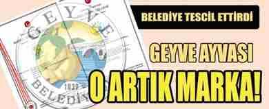 ust_geyveden-ayvaya-tescil_1